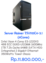 Server Rainer TSV110C4-3.1 SATA35 V3 (4 Cores)